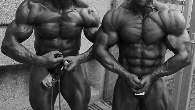 Bodybuilding and steroids