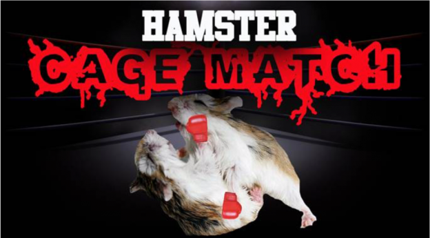 PETA Wants to End Roid Rage Research Involving Hamster Cage Fights