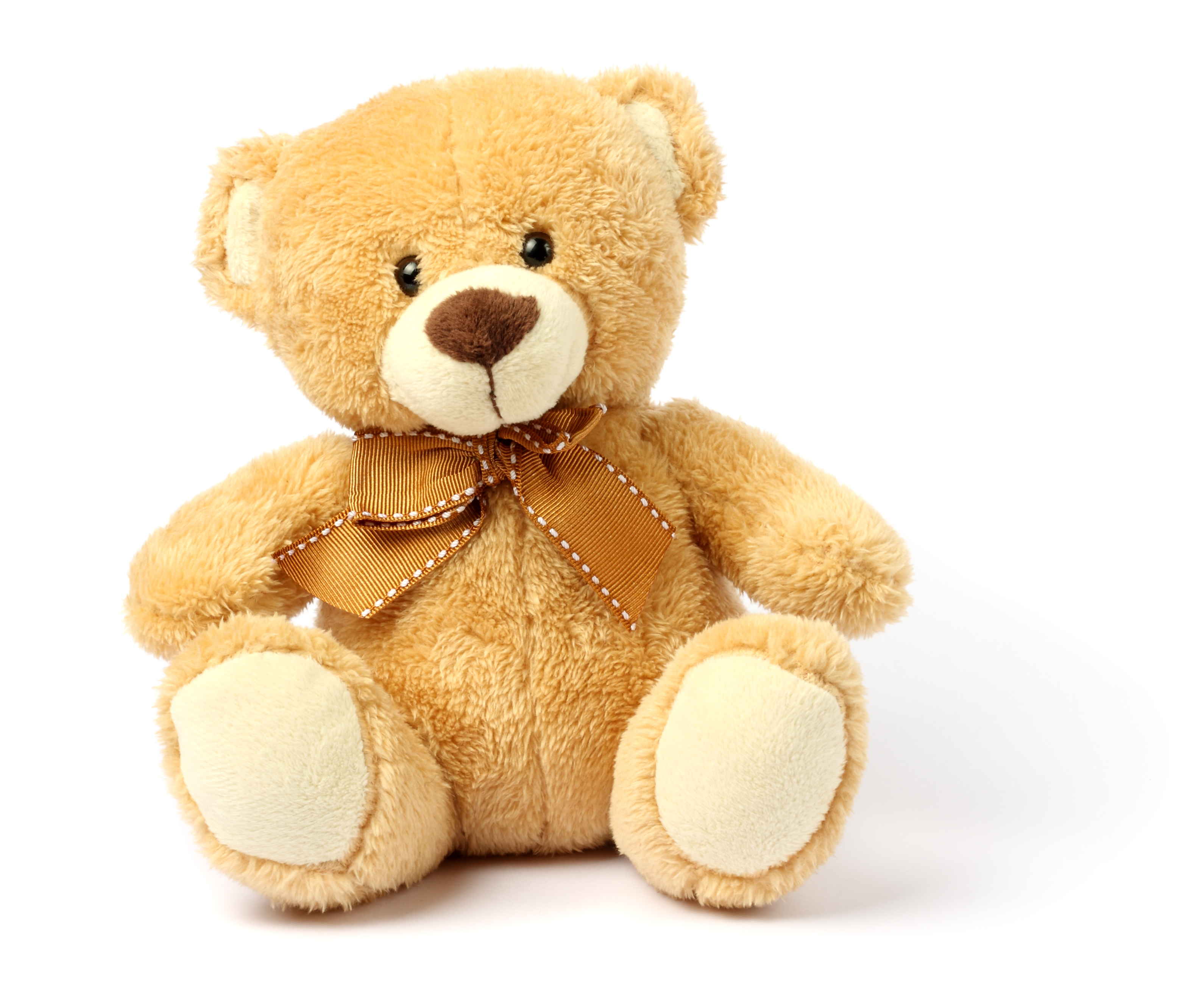 Teddy Bear Attacker with Anger Management Issues Admits Using Steroids